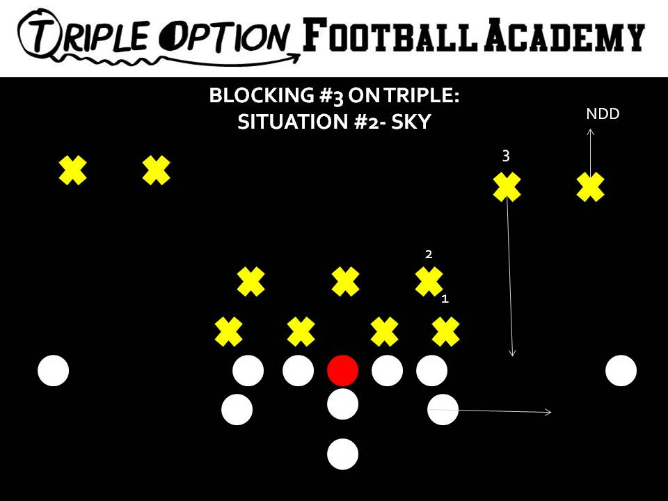 Complete Guide to the Playside A-Back's Blocking Assignment on TripleOption