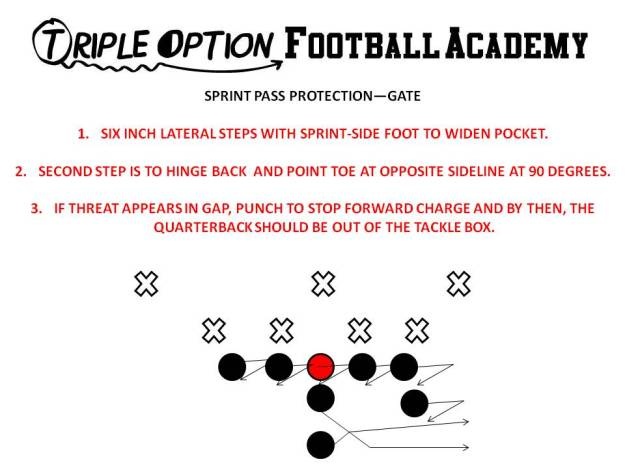 Gate Pass Protection (Triple Option Football Academy)