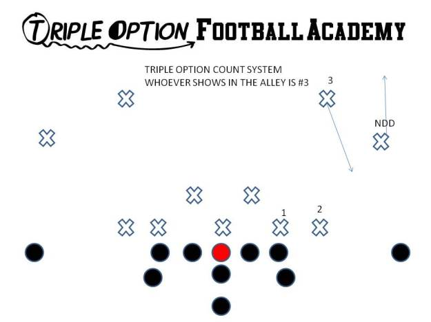 TRIPLE OPTION COUNT SYSTEM 2