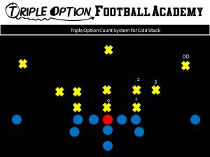 Triple Option Count System for Odd Stack