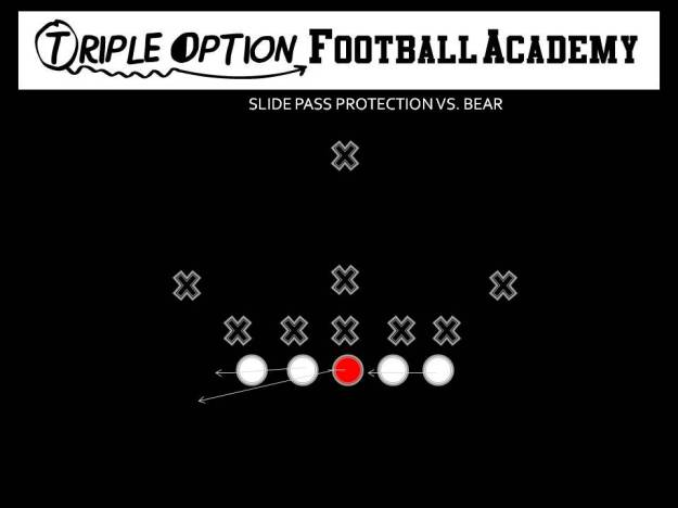 Slide Pass Protection vs. Bear.